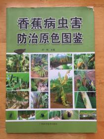 正版现货 香蕉病虫害防治原色图鉴 付岗 广西科学技术出版社