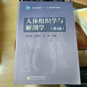 人体组织学与解剖学