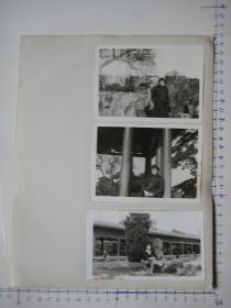 照片  黑白老旧照片   67 【 照片上的合售】
