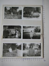 照片  黑白老旧照片    70 【 照片上的合售】