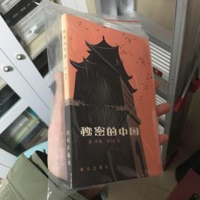 秘密的中国