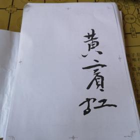 百年巨匠精品集    黄宾虹  205页(送审样稿的复印品)