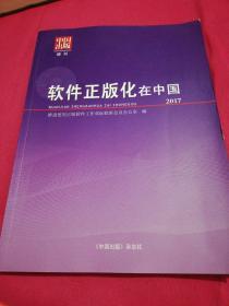 软件正版化在中国(2017)