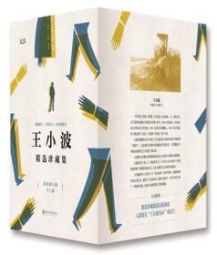 王小波精选珍藏集套装(6册套装)精装修订版礼盒装