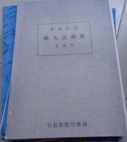 劳动法大纲 法政丛书(影印版复印本 民国版本)(R)