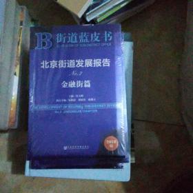 北京街道发展报告NO.2(金融街篇 2018版)未开封【28号