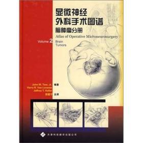 显微神经外科手术图谱:脑肿瘤分册