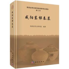咸阳东郊秦墓