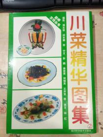 川菜精华图集.2