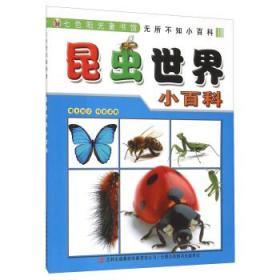 美国**地理真的好奇怪套装5册 儿童科普百科 正版书籍  昆虫世界小百科 正版 李长滨  9787553454122