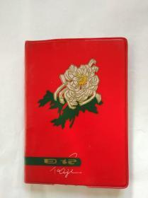 70年代老塑料日记   日记