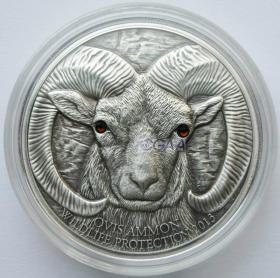2013年蒙古发行盘羊仿古镶水晶纪念银币