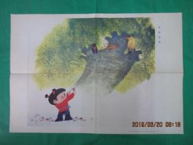 六年制小学语文第十二册教学挂图8(3)螳螂捕蝉
