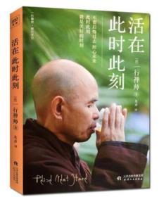 活在此时此刻 一行禅师修行手记 一本教你活出生命意义的灵性之书!每一个故事都是一行禅师真实的生活经历