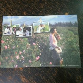 明信片;保加利亚一 枚。