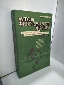 WTO 与中国知识产权制度的冲突与规避