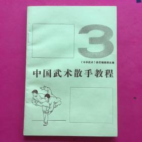 中国武术散打教程3