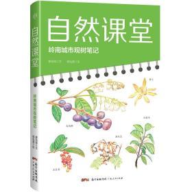 自然课堂——岭南城市观树笔记
