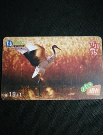 中国网通 ¥19+I    IC卡橙卡   丹顶鹤(只限北京)