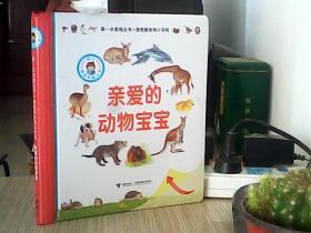 第一次发现丛书·透视眼系列小百科:亲爱的动物宝宝
