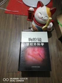 胸腔镜脊柱外科学  [美]迪克曼 主编;李明 译 精装 正版现货0327S