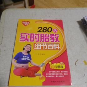 幸福摇篮系列:280天实时胎教细节百科(权威图文读本)