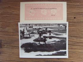 1963年,江苏省兴化县垛田公社,社员晒筛油菜籽