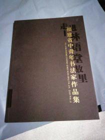 福建省中青年书法家作品集