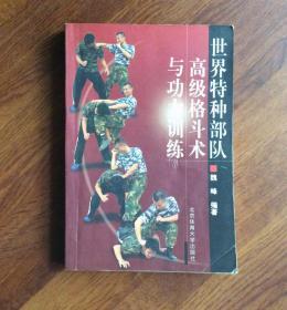 世界特种部队——高级格斗术与功力训练