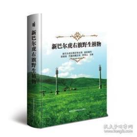 正版 新巴尔虎右旗野生植物/胡高娃/巴德玛嘎日布/李海山/