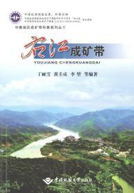 右江成矿带 9787562544586 丁丽雪 中国地质大学出版社