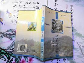 诗人眼中的南京
