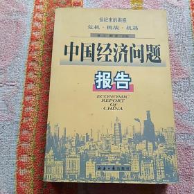 中国经济问题报告:世纪末的困惑:危机·挑战·机遇
