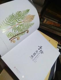 手绘大自然 植物绘画风格与技法