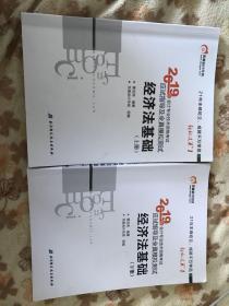2019年会计专业技术资格考试应用指导及全真模拟测试 经济法基础 上下册 全套2本