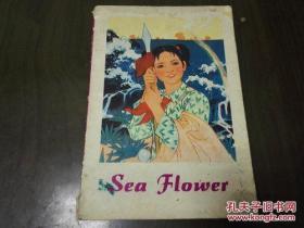《Sea Flower》