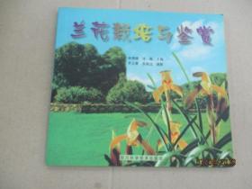 兰花栽培与鉴赏