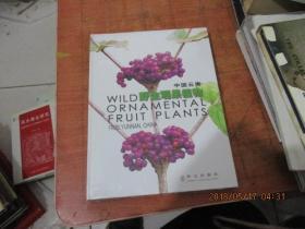 中国云南野生观果植物 未开封