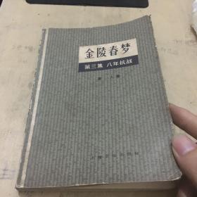 金陵春梦 第三集:八年抗战