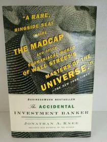 半路出道的投行家:华尔街十年巨变 The Accidental Investment Banker: Inside the Decade That Transformed Wall Street by Jonathan A. Knee (投资金融)英文原版书