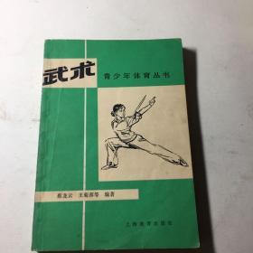 青少年体育丛书 武术