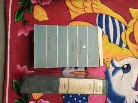 日本文学全集21:大佛次郎(实物拍照;书品佳;盒品差