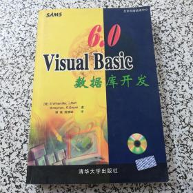Visual Basic 6.0数据库开发