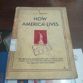 HOW AMERICA LIVES