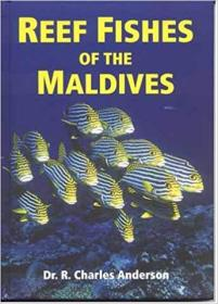 reef fishes of the maldives