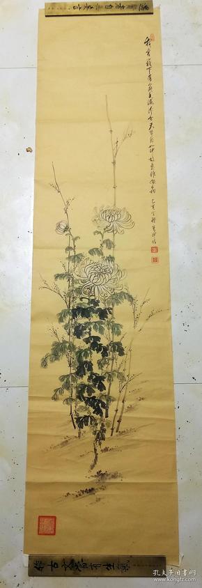 1899年 日本著名画家 下山武治  绘菊花      133×32厘米