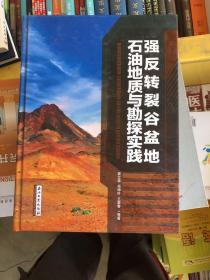 强反转裂谷盆地石油地质与勘探实践