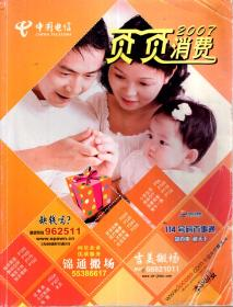 中国电信.页页消费2007
