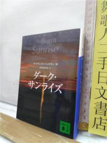 ダーク・サンライズ the burnt orange sunrise 北沢あかね 译 讲谈社文库 日文原版64开欧米翻译小说书