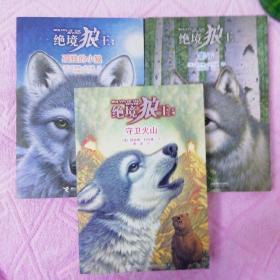 绝境狼王系列:孤独的小狼(1)